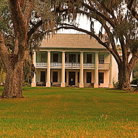 Louisiana Antibellum Home by Ron Olivier - Buildings & Architecture Homes