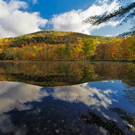 Fall Colors with reflection  by Michael Otter - Landscapes Travel ( water, fall colors, foliage, vt, reflections )