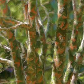 leopard tree by Krystal Keistler-Hawley - Digital Art Things