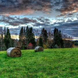 Over the hills and far away by Lasbi Naboj - Landscapes Prairies, Meadows & Fields ( field, hay, meadow, finland, landscape )