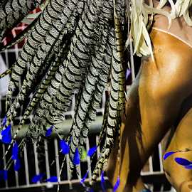 Shaken Tail Feathers  by Samy St Clair - People Body Parts ( jewelry, bikini, party, float, feather, rear-end, parade, cultural heritage, sexy, samba (brazilian), female body, movement, action, motion, dancer, music festival, behind, beauty in nature, fun, pheasant feathers, dance, culture, excitement, dancing, latin american and hispanic ethnicity, cultural, sensuality, sex symbol, beauty, school of samba parade, multi colored, traditional culture, butt, samba dancing, sao paulo, thong, carnival, silver, beautiful, sambadrome, women, brazil, blue, female, costume, samba school, celebration, competition, traditional festival )