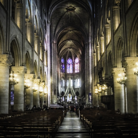 Notre Dame de Paris by Sam Shoesmith - Instagram & Mobile iPhone ( paris, notre )