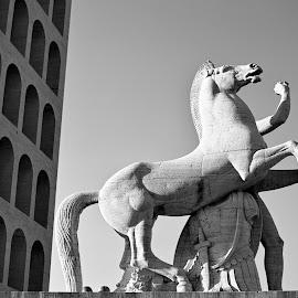 Colosseo Quadrato by Emanuele Dini - Buildings & Architecture Public & Historical ( cavallo, colosseo quadrato )