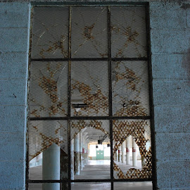 Broken Window by Tina Cantarinha - Travel Locations Landmarks ( alcatraz )