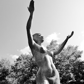 Hallelujah by Janet Vertin - Novices Only Objects & Still Life ( photograph, novice, black and white, amateur, photo, sculpture, praize jeez-us!, statue, if you're happy and you know it clap your hands!, female, woman, griffis sculpture park, celebration, raise the roof )