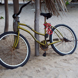 (My) Belize Transportation by Donna Chapman-Domitrek - Transportation Bicycles