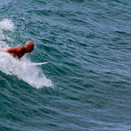by Sarah Danielson - Sports & Fitness Surfing (  )