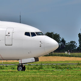 Boeing 737 by Tineghe Adrian - Transportation Airplanes ( airport, sky, pilots, plane, airplane, boeing, transportation, jet, planes,  )