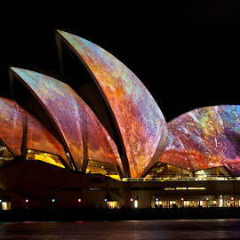 The Opera House by Ella Kingston - Buildings & Architecture Other Exteriors ( building, opera-house, harbour, city celebration, festival, architecture, light, sydney, , city, night )