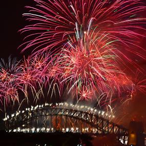 Not Borring by Kamila Romanowska - Abstract Fire & Fireworks ( new year, 2015, australia, fireworks, nye, celebration, sydney )