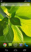 Screenshot of Leaf Live Wallpaper Galaxy S4