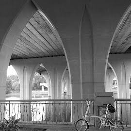 Bridge Piers by Adib Noh - Buildings & Architecture Bridges & Suspended Structures ( putrajaya, bridge )