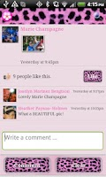 Screenshot of Cheetah Theme for Facebook