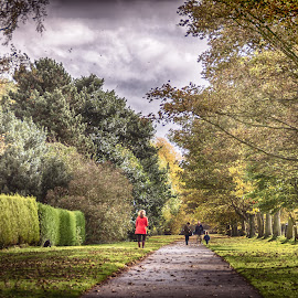 The Avenue by Gary Seddons - Novices Only Landscapes ( tonemapped, wentworth, autumn, trees, walkway, people, colours,  )