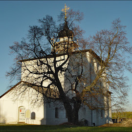Suzdal / Autumn by Vlad Sidorak - Buildings & Architecture Other Exteriors ( church, tree, autumn,  )