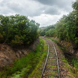Railway by Cesare Morganti - Transportation Railway Tracks ( train tracks, railway, rail, transportation, railway track )