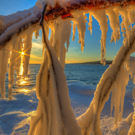 Icicle Branch by David Johnson - Landscapes Sunsets & Sunrises ( winter, sunset, ice, artistic, lake superior )