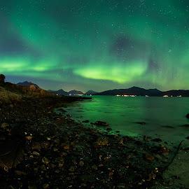 Beach at Night by Rune Nilssen - Landscapes Beaches ( k3, orealis, aurora, sea, pentax, beach, vestfjorden, fjrd, rune, lodingen, norway, night, kongsvik )
