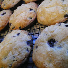 Jordan Marsh Famous Blueberry Muffins