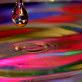 Hanging On by Janet Lyle - Abstract Water Drops & Splashes ( water, droplet, colors )