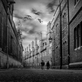 Trinity Lane  by Stephanie Veronique - Black & White Street & Candid ( old, b&w, street, town, road, cambridge, people, lane,  )