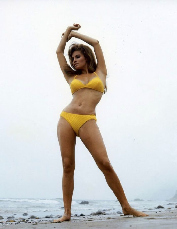 The Sexy Miss Raquel Welch