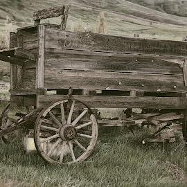 Western Wagon by Lee Gochenour - Transportation Other ( oregon, columbia gorge, wagon, western, old west, landscape, antique )