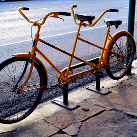 Let's Go by Alicia Lara - Transportation Bicycles