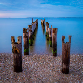 Cape Pilings by Ed Esposito - Landscapes Waterscapes ( gentle, ocean, sunrise, pilings, morning, cape cod, soft )