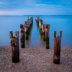 Cape Pilings by Ed & Cindy Esposito - Landscapes Waterscapes ( gentle, ocean, sunrise, pilings, morning, cape cod, soft )