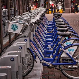 Row of Bikes by Carol Plummer - Transportation Bicycles ( rentals, bikes, artistic, objects, city )