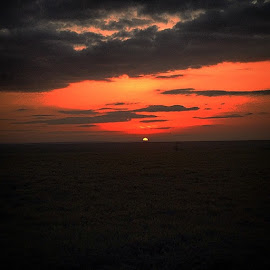 by Christian Mathews - Landscapes Sunsets & Sunrises ( tb, mara, sunrise, morning, gamedrive )