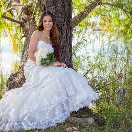 Bride under tree by Devin Donnelly - Wedding Bride ( love, tree, autumn, wedding, lake )