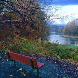 Park bench by the river in Hawley by Jody Rowe - City,  Street & Park  City Parks