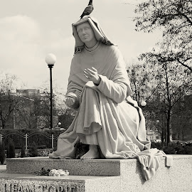 The inscription on the monument: I trust you by Piotr B. Tubylec - Buildings & Architecture Statues & Monuments