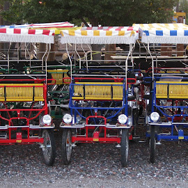 Rental vehicles for tourists. by Dan Dusek - Transportation Other ( tourist vehicle., color, vehicles, transportation, repetition,  )