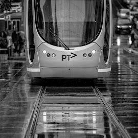 Melbourne Tram by Victor Sinden - Transportation Trains