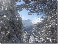 sulphur mountain 057