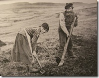 using the foot plough 1890s maybe