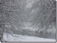 today's snow 001