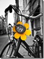 bruggeyellowflowerbike-1_stephen_mathieson1
