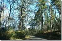 A back road in Moray