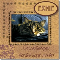 Ernie 479x479
