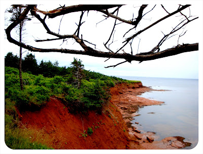 pei red-sand cliff