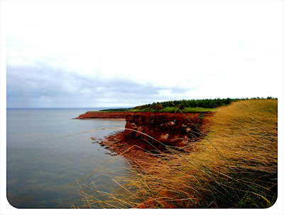 red sand cliffs pei