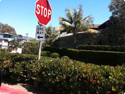 laguna neighborhood