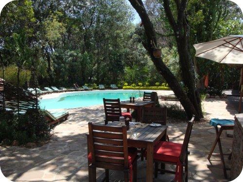 mara safari club pool