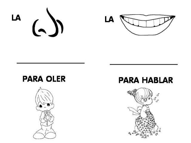ficha infantil: Fichas de los cinco sentidos