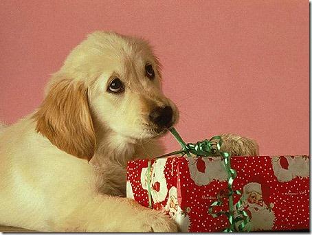 postal de navidad cosasdivertidasdenavidad.blogspot (108)