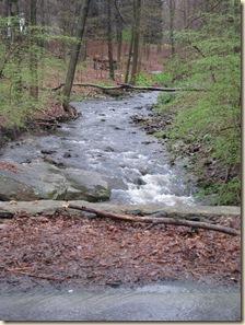 WK 2 Stream